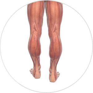 Beinverlängerung unterschiedlich lange Beine.